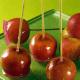 Kandierte Äpfel und Möhren-Zitronen-Konfitüre