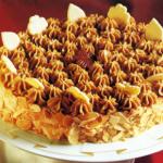 Mokkacreme-Rum-Torte und Schokoladen-Sahne-Torte